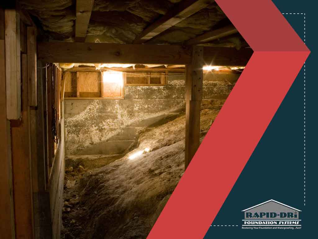 3 COMMON CRAWL SPACE ISSUES